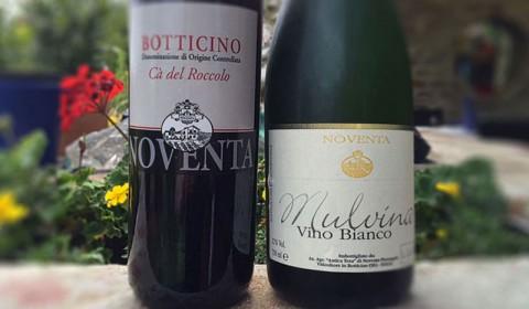 Bio Hauswein von Noventa, Lombardei, Brescia